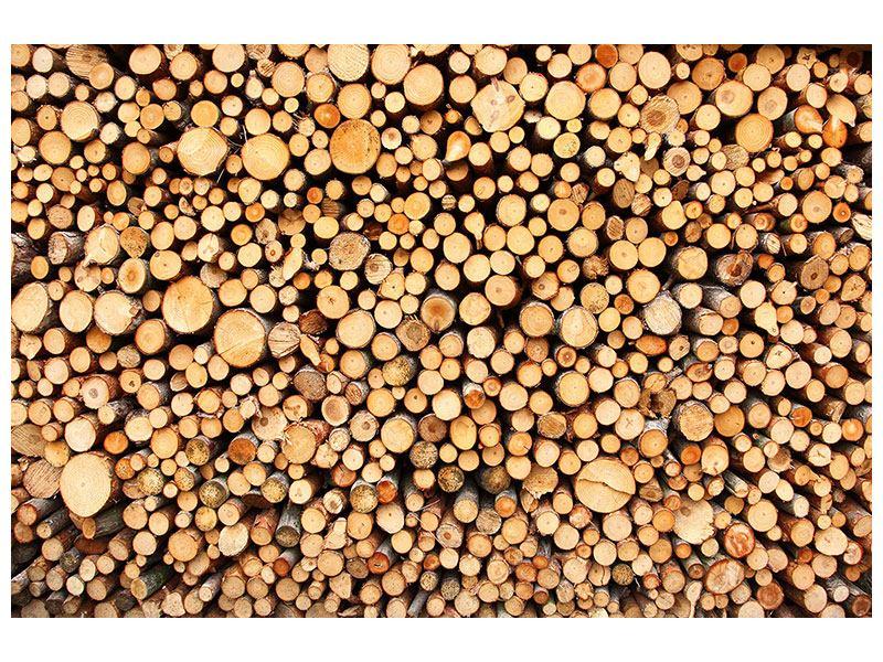 Klebeposter Holzstämme