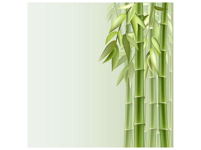 Klebeposter Bambuswall