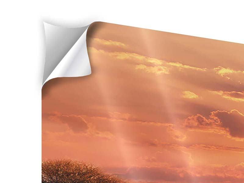 Klebeposter Abenddämmerung in Kenia