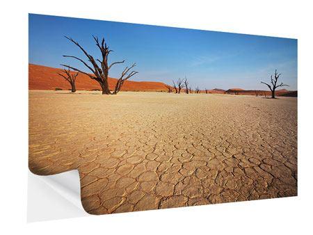 Klebeposter Wüste