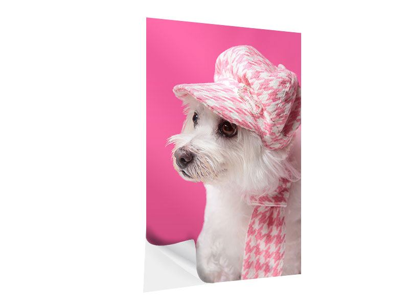 Klebeposter Pretty Dog In Pink