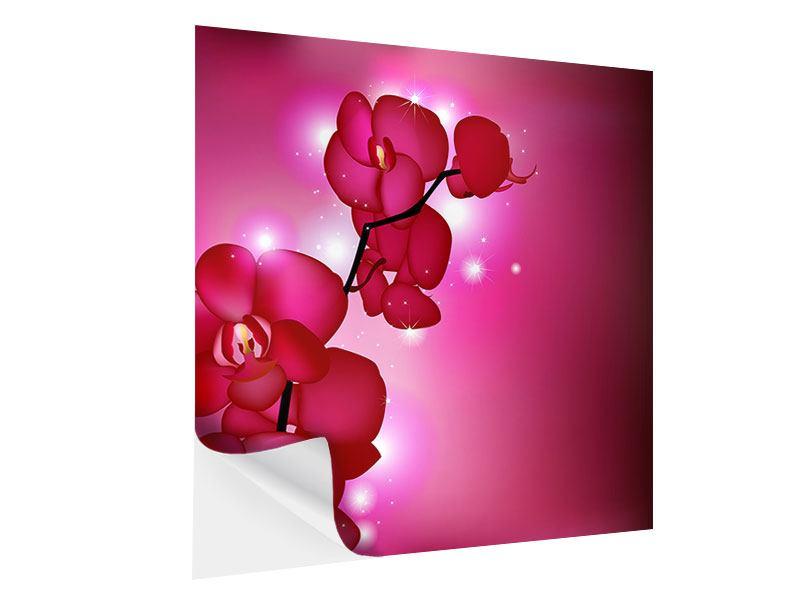 Klebeposter Orchideenmärchen