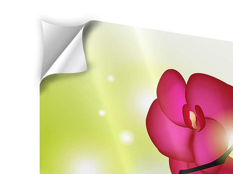Klebeposter Heiligtum der Orchidee
