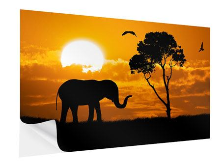 Klebeposter Verträumtes Afrika