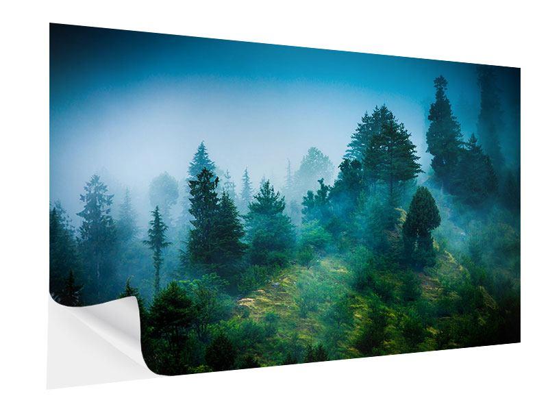 Klebeposter Geheimnisvoller Wald