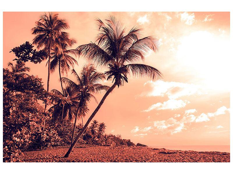 Klebeposter Tropenparadies