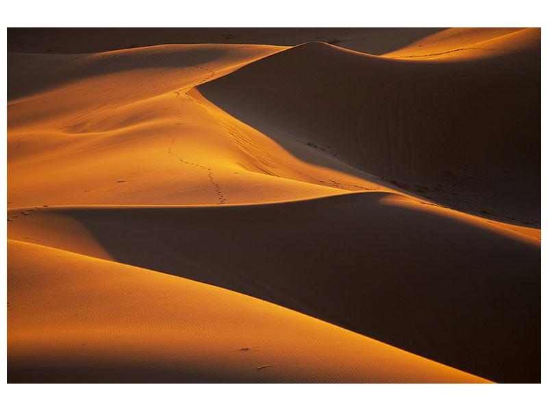 Klebeposter Wüstensand