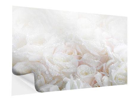 Klebeposter Weisse Rosen im Morgentau