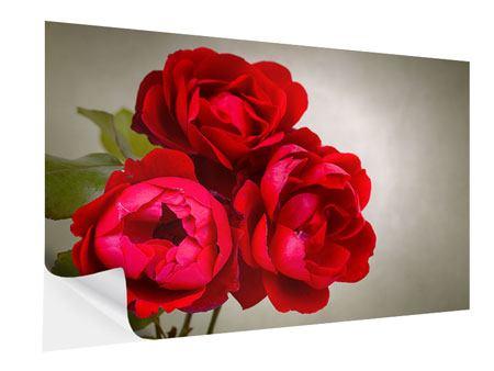 Klebeposter Drei rote Rosen