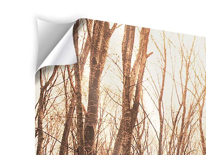Klebeposter Der kahle Wald