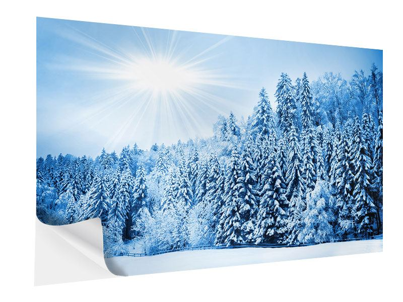 Klebeposter Wintermärchen