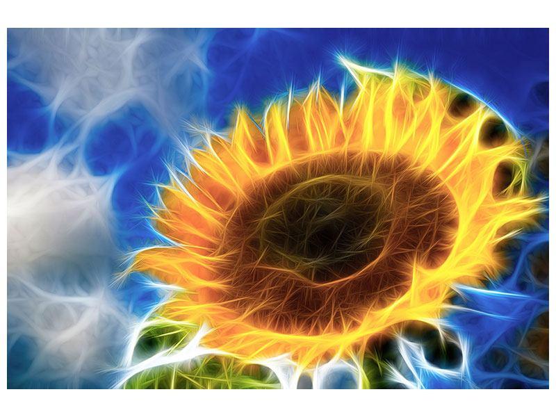 Klebeposter Der Sonne entgegen