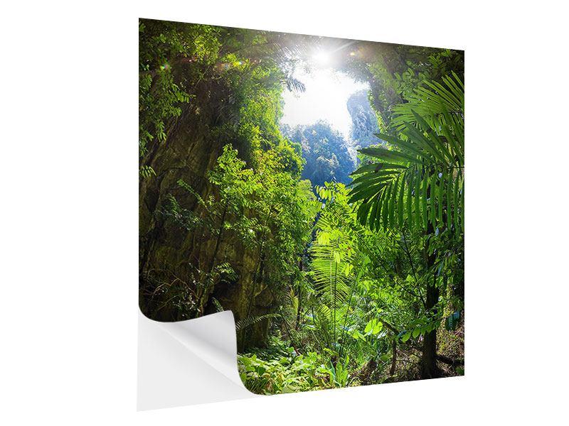 Klebeposter Lichtung im Dschungel