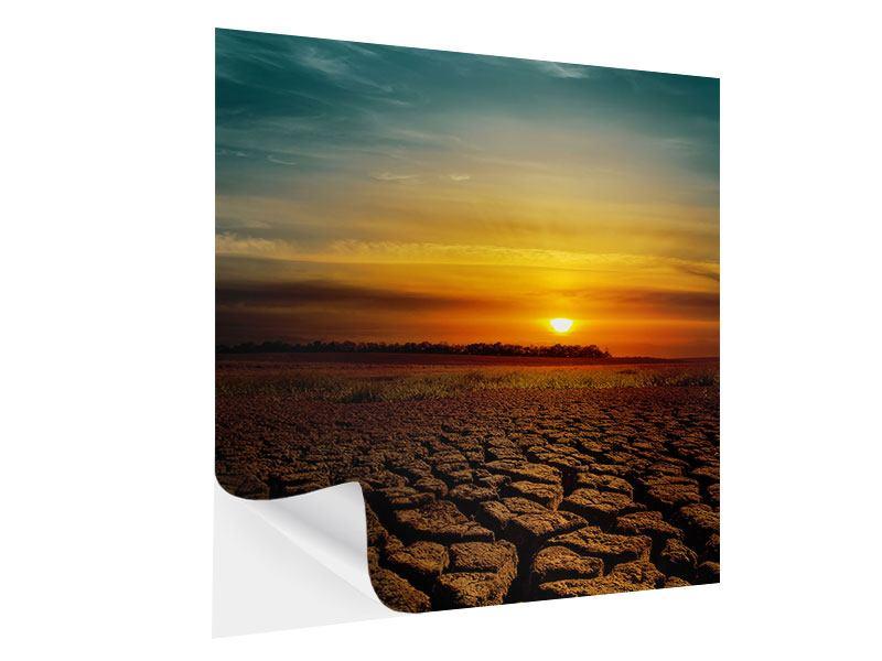 Klebeposter Afrikas Dürre