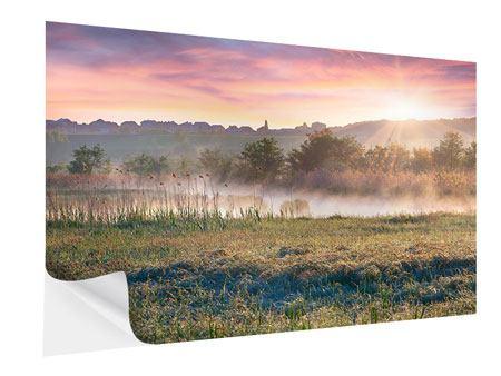 Klebeposter Sonnenuntergang am Hügel