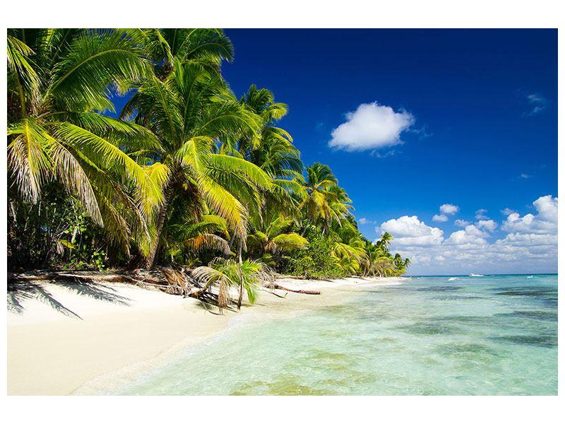 Klebeposter Die einsame Insel
