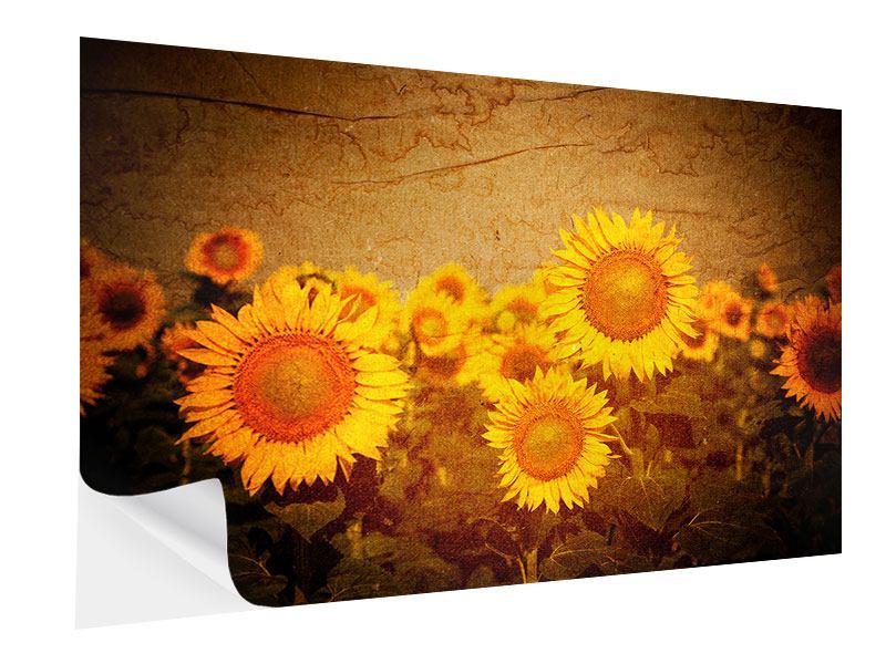Klebeposter Retro-Sonnenblumen