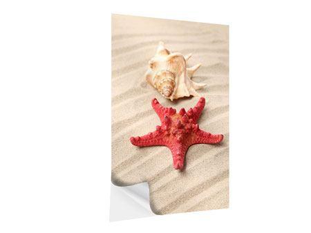 Klebeposter Die Muschel und der Seestern
