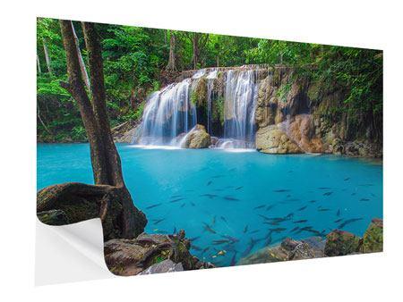 Klebeposter Naturerlebnis Wasserfall