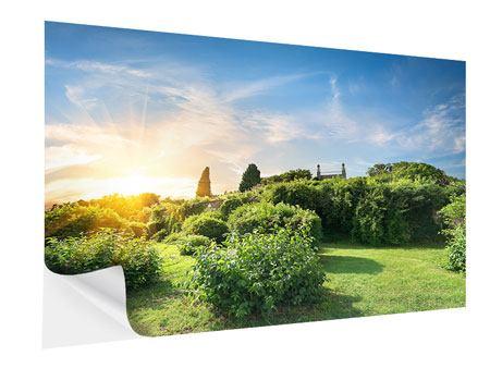 Klebeposter Sonnenaufgang im Park