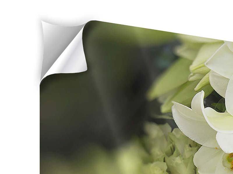 Klebeposter Die Lilien und Friends