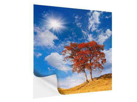 Klebeposter Der Herbstbaum