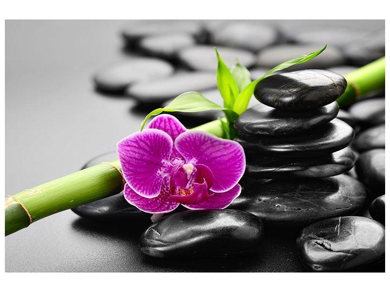 Klebeposter Feng-Shui-Orchidee