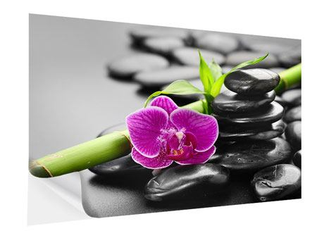 Self-Adhesive Poster Feng Shui Orchid