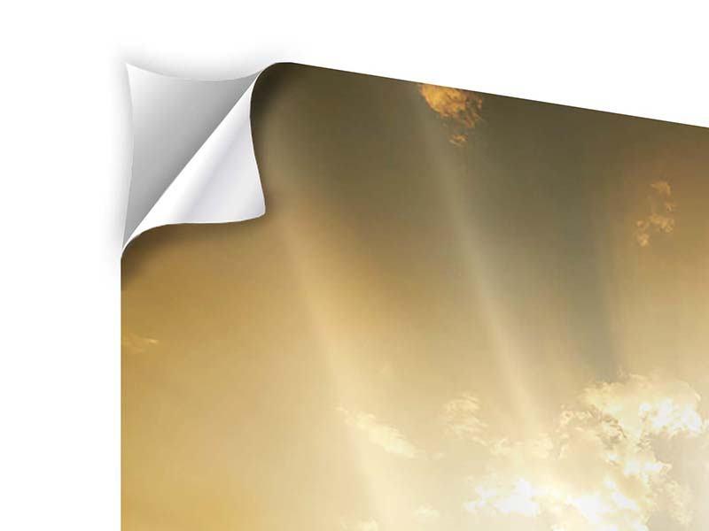 Klebeposter Mystischer Sonnenuntergang