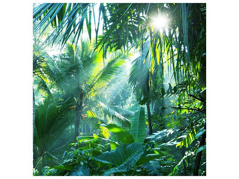 Klebeposter Im Tropenwald