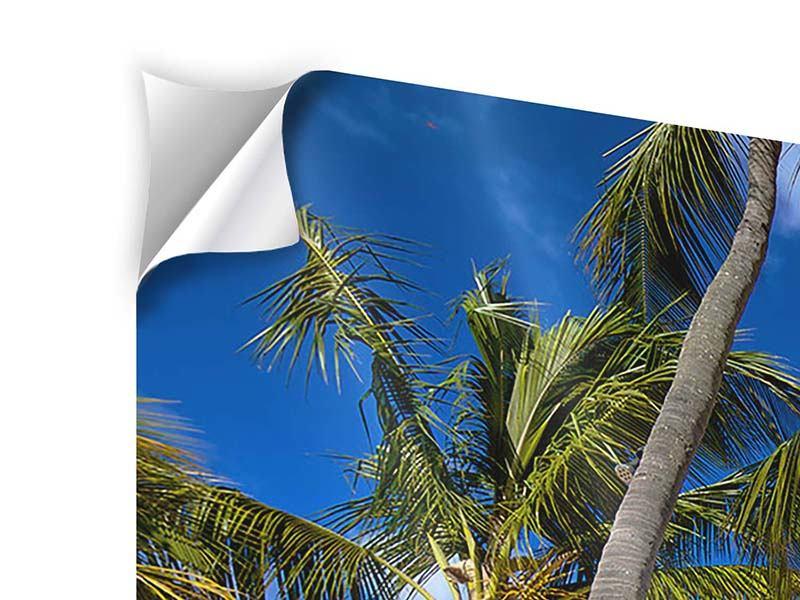 Klebeposter Mauritius