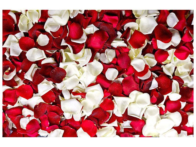Klebeposter Rosenblätter