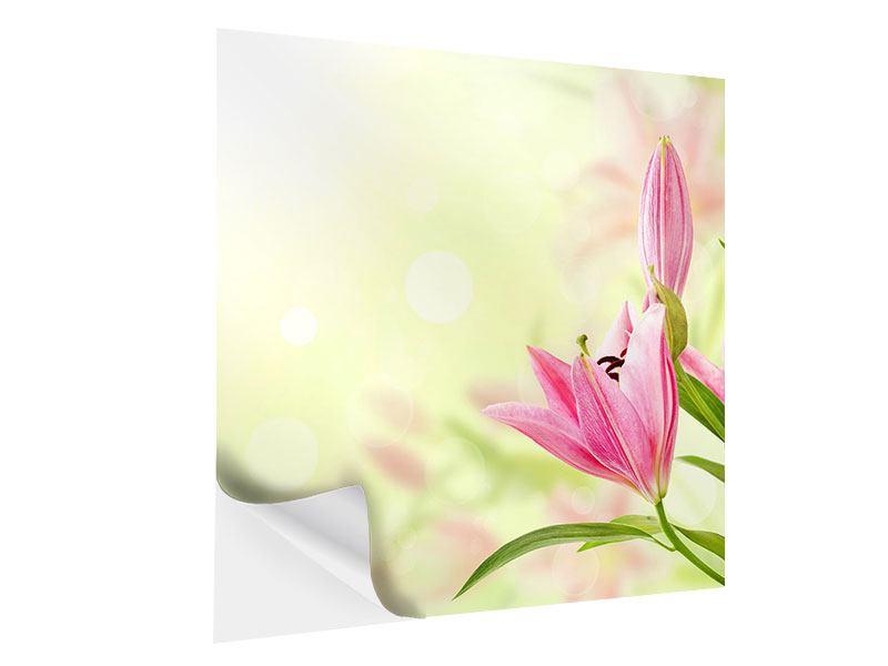 Klebeposter Lilien-Perspektive