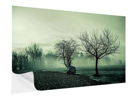 Klebeposter Der Auwald im Nebel