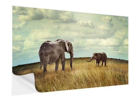 Klebeposter Elefanten und Feng Shui