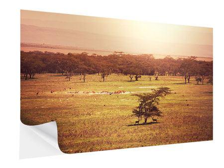 Klebeposter Malerisches Afrika