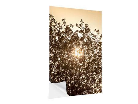 Klebeposter Das Licht im Baum