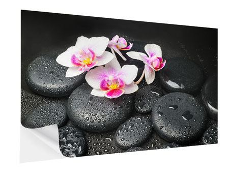 Klebeposter Feng-Shui-Orchidee Zen
