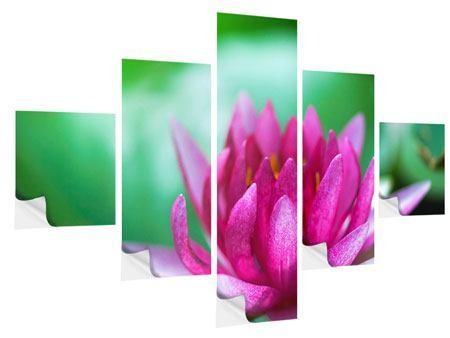 Klebeposter 5-teilig Lotus in Pink