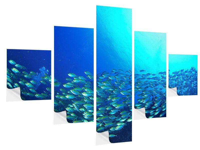 Klebeposter 5-teilig Fischschwarm