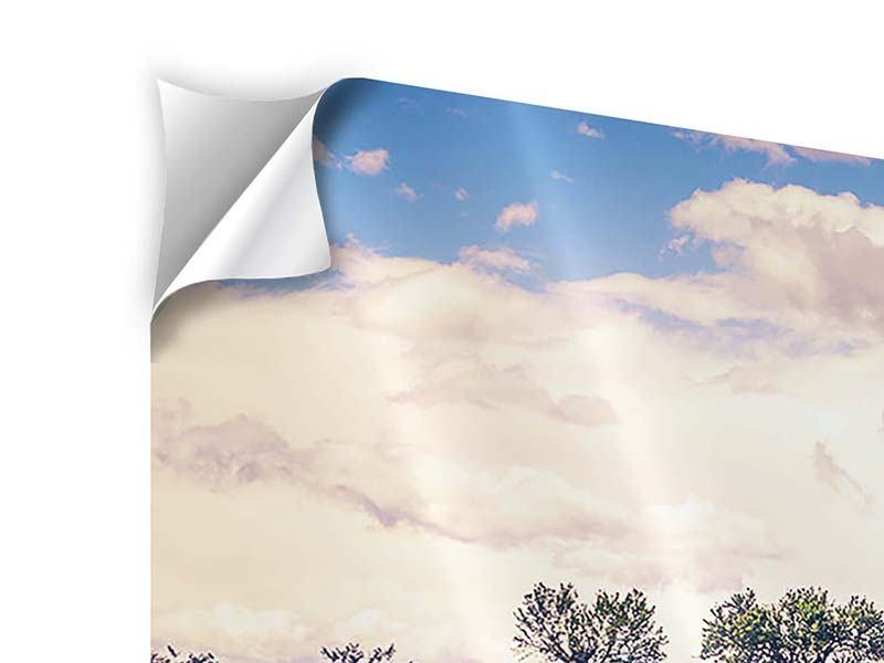 Klebeposter 5-teilig Das Lavendelfeld