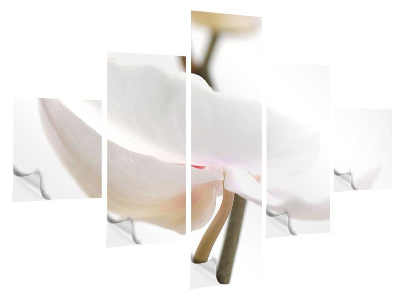 Klebeposter 5-teilig XXL Orchideenblüte