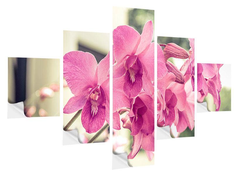 Klebeposter 5-teilig Ein Fensterplatz für die Orchideen