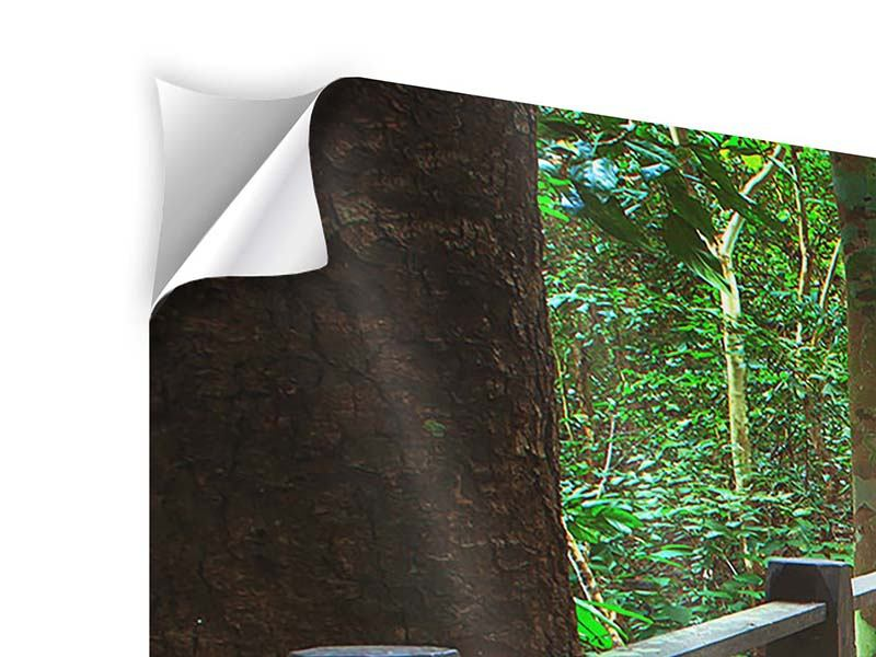 Klebeposter 5-teilig Die Brücke im Wald