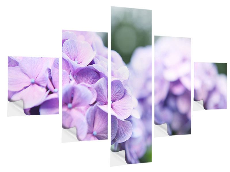 Klebeposter 5-teilig Hortensien