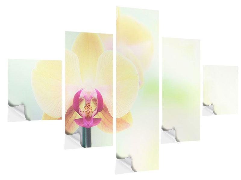 Klebeposter 5-teilig Lovely Orchidee