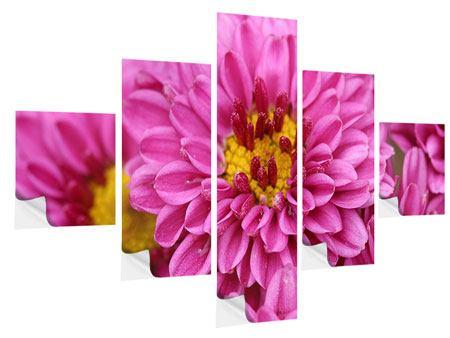 Klebeposter 5-teilig Chrysanthemen