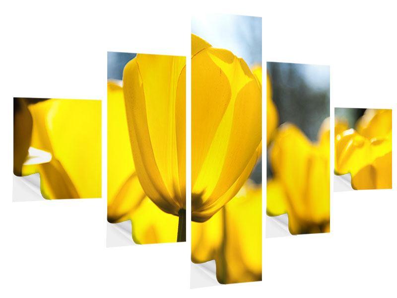 Klebeposter 5-teilig Gelbe Tulpen in XXL