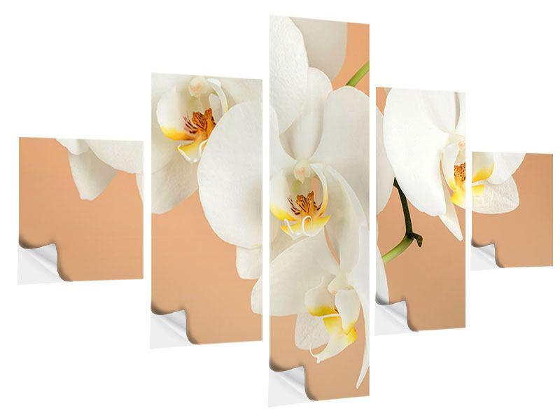 Klebeposter 5-teilig Weisse Orchideenblüten
