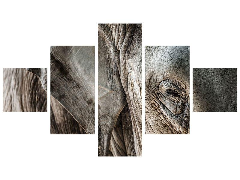 Klebeposter 5-teilig Close Up Elefant